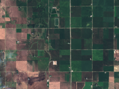 Hail storm damage to corn and soybeans from Sentinel 2