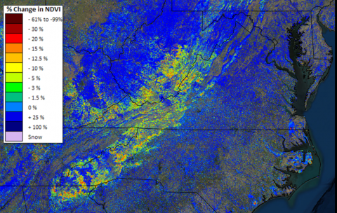 Delayed spring in the Central Appalachians in 2013